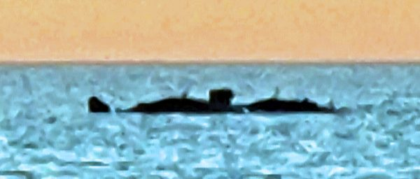 Gesehen auf der Nordsee