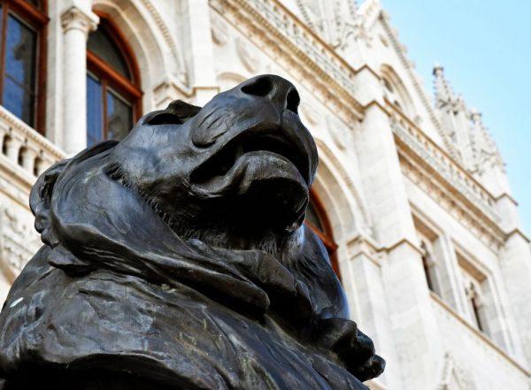 Ein schwarzer Löwe in Budapest