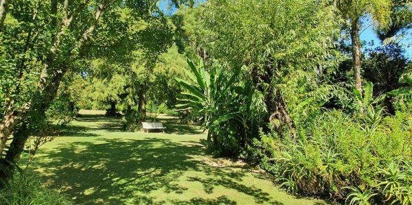 Der Garten vom Restaurant 'Gato Blanco' im Tigre-Delta