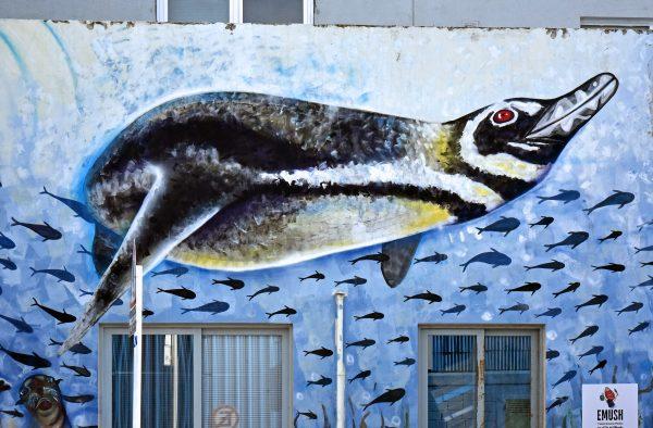 Ein Haus mit Pinguin in Ushuaia