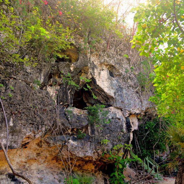 Freaky Face Cave, Cayman Brac