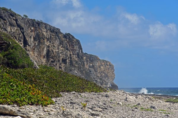 The Bluff auf Cayman Brac