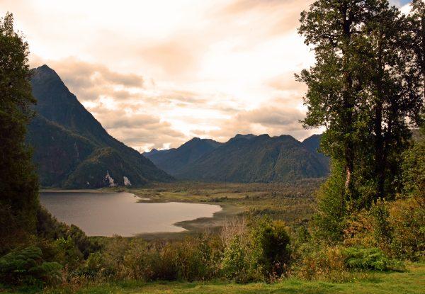 Im Pumalin Douglas Tompkins National Park