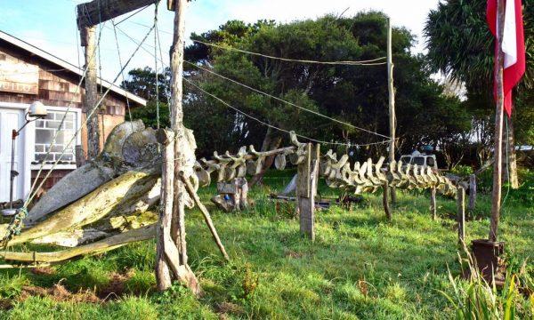 'Museo Pre-Historici de Puente Quilo', Chiloé