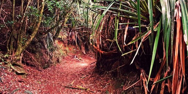 Ein Graben in der Festung Agüi in Chiloé