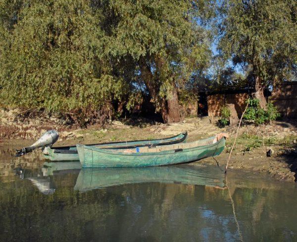 Im Donau-Delta