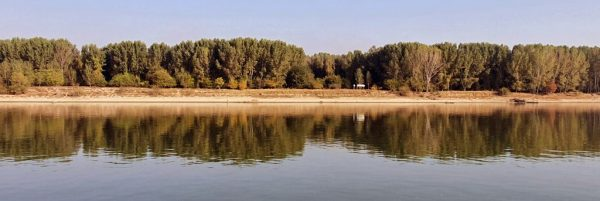 Spiegelungen auf der Donau