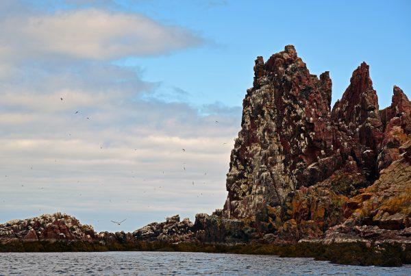 Dvorovaya-Bay, Russland