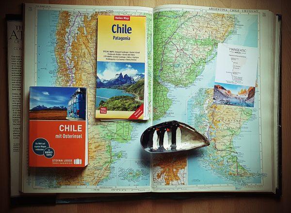 Zinnis Andenken an Argentinien und Chile