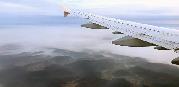 Auf dem Flug in die Heimat