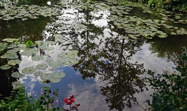 Monets Seerosenteich in Giverny