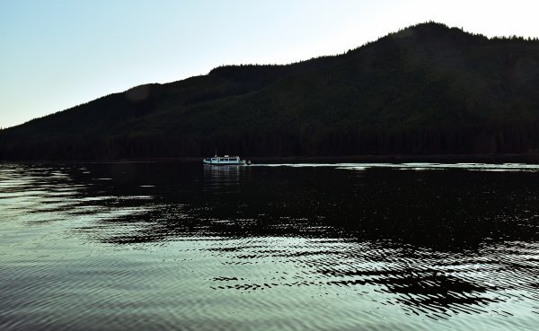 Auf dem Weg nach Point Adolphus zur Walbeobachtung