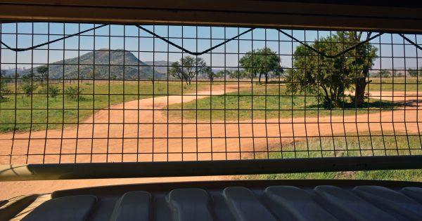 Ein Gitterwagen im Lion und Safari Park