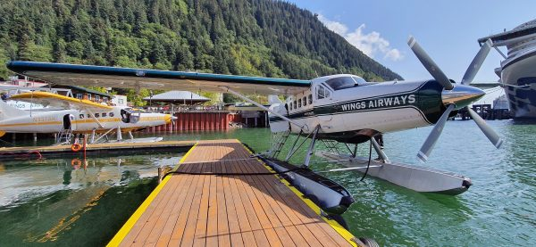 DeHavilland Otter, Wings Airways