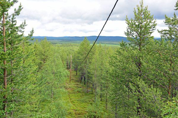 Ausblick vom 'Høyde 96' Aussichtsturm