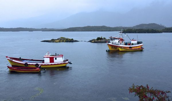 Blick auf Puerto Edén