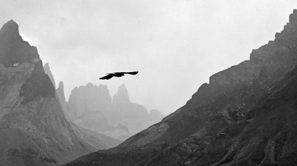 Im Nationalpark 'Torres del Paine'