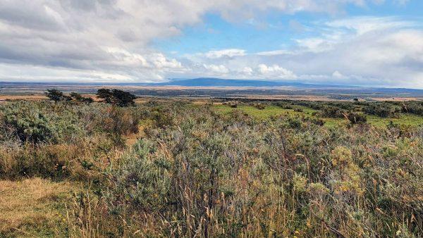 Die unendliche Weite von Patagoniens Steppe