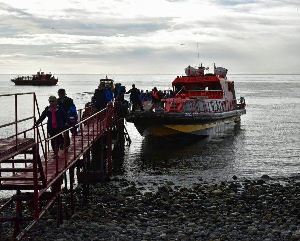 Ankunft auf der Insel Magdalena