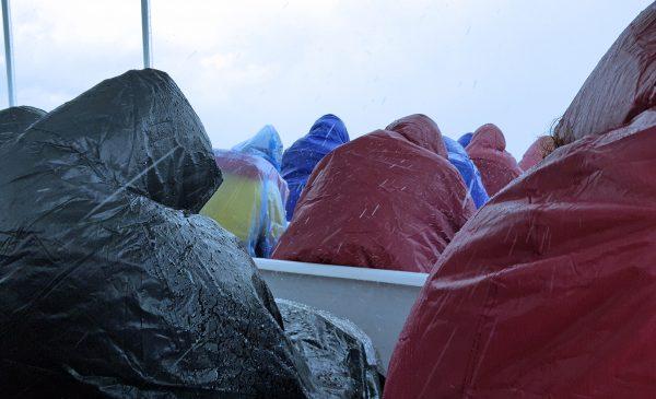 Regen im Los Haitices Nationalpark