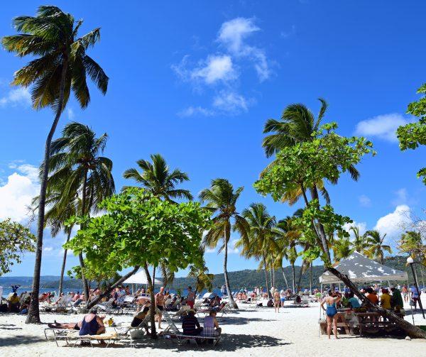 Der Strand auf der Isla Cayo Levantado