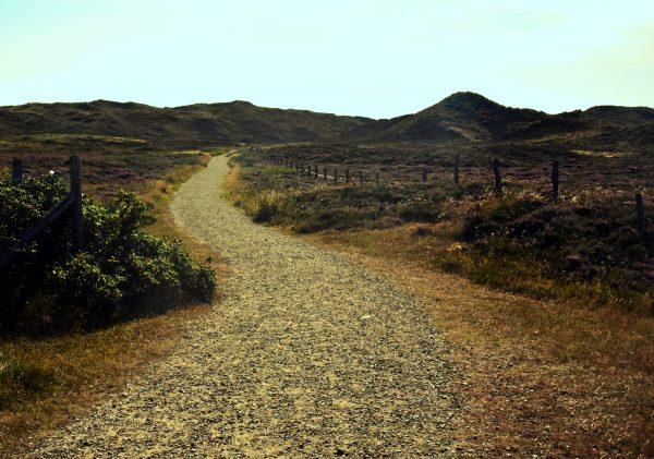 Dünenwanderweg auf Sylt