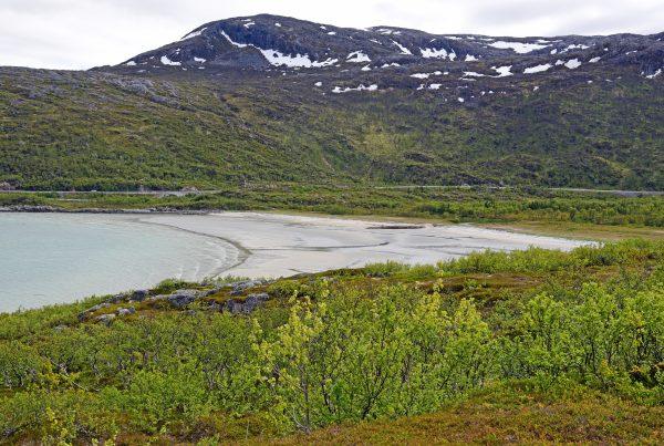 Rund um die Fjorde von Tromsø