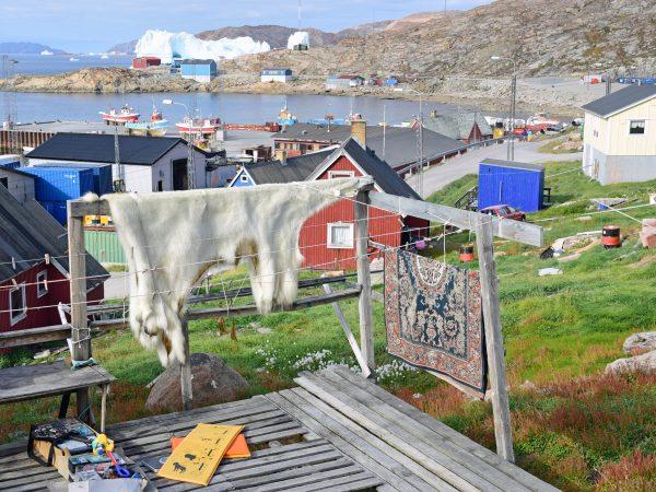 Eisbärfell in Upernavik
